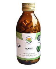 Salvia Paradise Nopál - Opuncie kapsule