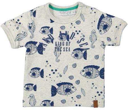 Dirkje fantovska majica, 56, sivo modra