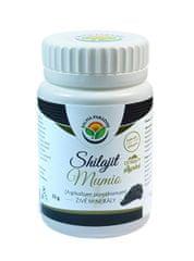 Salvia Paradise Mumio - Shilajit 25g