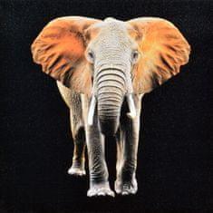 Superposter Obraz na plátne 70x70 Pomarančový slon