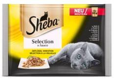 Sheba mokra hrana za mačke, perutninski izbor, 4 x 85 g