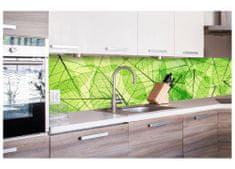 Dimex Fototapeta do kuchyne KI-260-048 Listy 60 x 260 cm