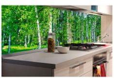 Dimex Fototapeta do kuchyne KI-180-044 Brezový háj 60 x 180 cm