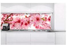 Dimex Fototapeta do kuchyne KI-180-054 Kvety jablone 60 x 180 cm