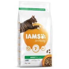 IAMS karma dla kotów Cat Adult Ocean Fish, 2 kg