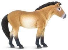 Safari Ltd. Prževalski konj