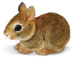 Safari Ltd. mladič vzhodnoameriškega zajca