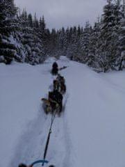 Adrop.sk Psie záprahy Oravská Lesná