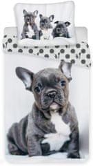 Jerry Fabrics Posteľná bielizeň Bulldog