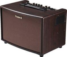 Roland AC 60 RW Kombo na akustické nástroje