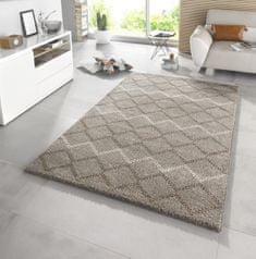 Mint Rugs AKCE: 160x230 cm Kusový koberec Eternal 102586