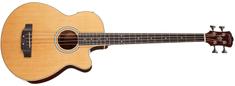 Washburn AB5-A-U Elektroakustická basgitara