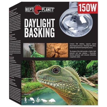 REPTI PLANET žarnica Daylight Neodymium, 25 W