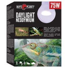REPTI PLANET żarówka Daylight Neodymium 75 W