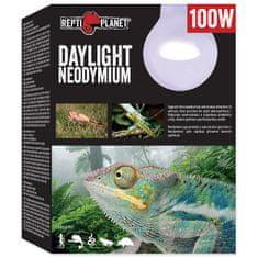 REPTI PLANET żarówka Daylight Neodymium 100 W