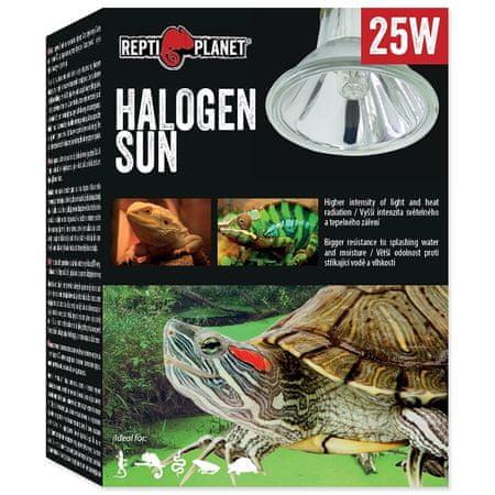 REPTI PLANET žarnica Halogen Sun, 25 W