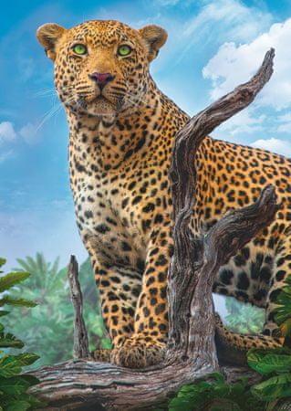 Trefl Puzzle 500 db Leopard