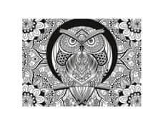 Clementoni Puzzle 500 dílků 3D Colour Therapy Puzzle - Owl