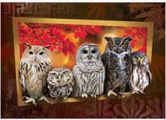 Art puzzle Puzzle 1000 db Owls