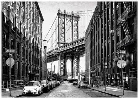 Dino Puzzle 1000 dílků Street of Manhattan