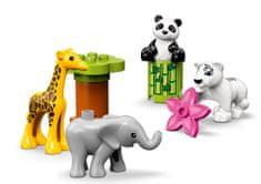 LEGO zestaw DUPLO 10904 Zwierzątka