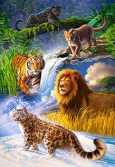 Castorland Big Cats 1000 dielikov