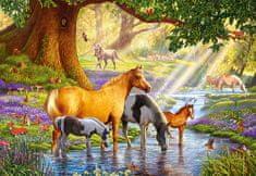 Castorland Crisp: Horses by the Stream 1000 dielikov