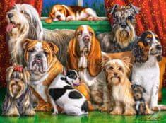 Castorland Dog Club 3000 dielikov