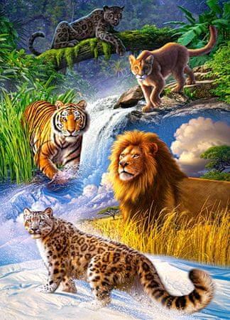 Castorland Puzzle 260 dílků Big Cats