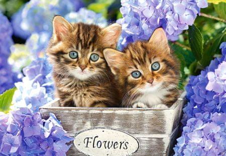 Castorland Puzzle 1500 db Cute Kittens