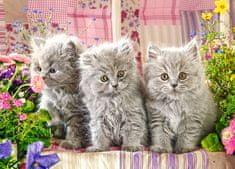 Castorland Three Grey Kittens 260 dielikov
