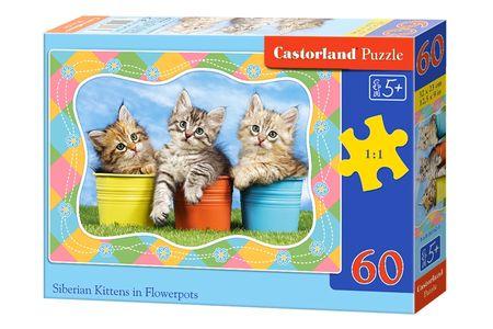 Castorland Siberian Kittens in Flowerpots