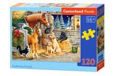 Castorland Puzzle 120 db Gathering Friends