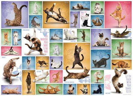 EuroGraphics Puzzle 1000 db Yoga Cats