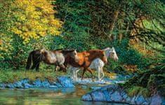 SunsOut Puzzle 1000 pieces Chris Cummings - Bear Creek Crossing
