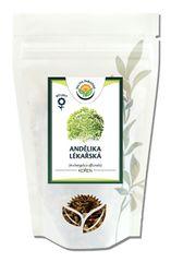 Salvia Paradise Archangelika lekárska koreň