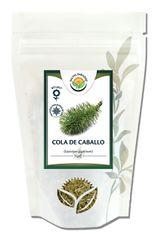 Salvia Paradise Cola de Caballo - Praslička obrie