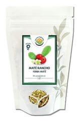 Salvia Paradise Maté Rancho zelené