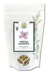 Salvia Paradise Vrbovka malokvetá vňať