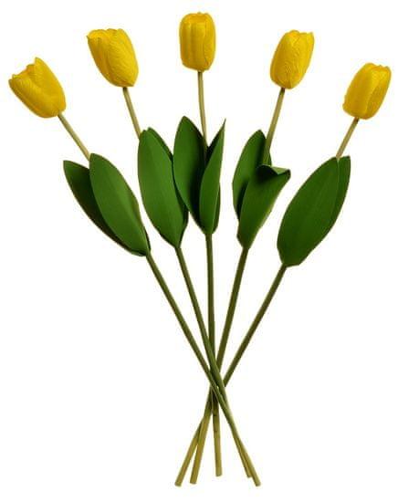 EverGreen Tulipán 2 listy, 60 cm - kytica 5 ks