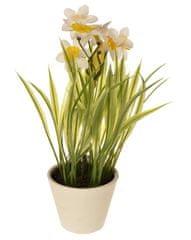 EverGreen Dekoratívne narcisy v kvetináči, výška 22 cm - biele