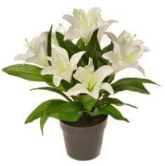 EverGreen Dekoratívna ľalia v kvetináči, výška 30 cm - biela