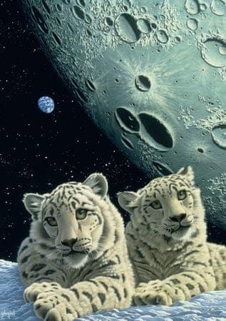 Grafika Puzzle 1500 db Schim Schimmel - Lair of the Snow Leopard