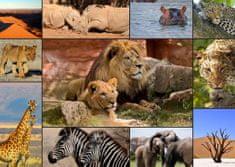 Grafika Puzzle 2000 db Collage - Wildlife
