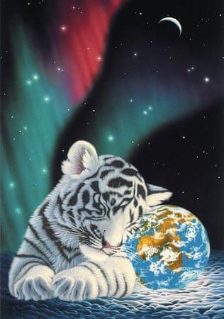 Grafika Puzzle 1000 db Schim Schimmel - Earth Light