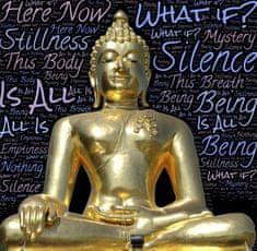 Grafika Budha 1500 dielikov