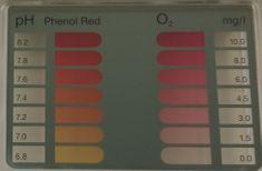 Marimex Tester na bezchlórovú chémiu (O2) 11314001