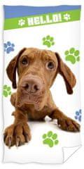 Carbotex otroška brisača Pes