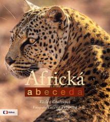 Chaloupek Václav: Africká abeceda