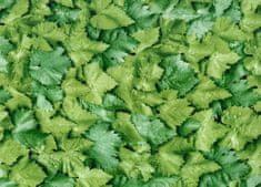 Gekkofix Samolepiaca fólia dekoratívna 10195 LISTY zelené - šírka 45 cm